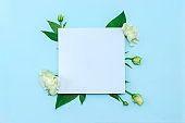 Paper blank with fresh white flowers on pastel blue background. Flat lay, top view.