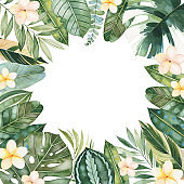 Greeting card with green leaves,branches,palm leaf,flowers