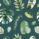 Dark background with green leaves,branches,palm leaf