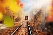 Passenger Train on countryside landscape in fall time