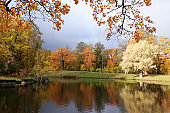 October autumn park in Russia, trees with yellow leaves and reflection in the lake, Alexander Park, Leningrad Region.