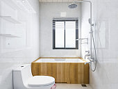 3D rendering, modern and clean bathroom design with rain equipment and bathtub, toilet, etc.