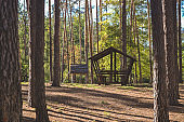 An old wooden pavilion in the forest. Peaceful place for relaxation.