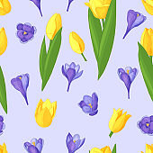Seamless pattern of spring flowers: crocuses and tulips