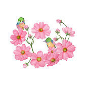 Cosmos,birds,Wedding Watercolor Wreath, Bouquets,Frame Floral,Flowers arrangement decorate,Hand painted,isolated on white background