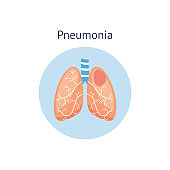 Pneumonia disease diagram a healthy and damaged lungs vector illustration isolated.