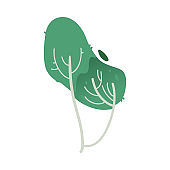 Vector illustration of fantasy tree with green foliage isolated on white background.