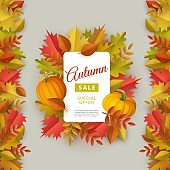 Autumn sale banner with multi colored tree leaves and ripe pumpkins around white paper and on borders.