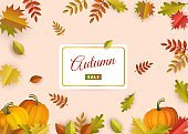 Autumn promotional banner with falling colorful tree leaves and ripe orange pumpkins.