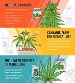 Vector illustration set of medical use and legalization of marijuana horizontal banners.
