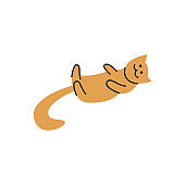 Cat or kitten lays on his back vector line illustration isolated on background.