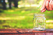 business hand put green plant growing coin saving concept.
