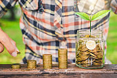 business man hand put coins stack on wood table with green plant growing on. money saving business finance success wealth investment budget concept. startup plan. ESG.