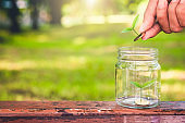 businessman putting green leaf coin on stack save money growing in to glass jar on wood table outdoor. business financial banking saving concept. investment profit income. marketing startup success.