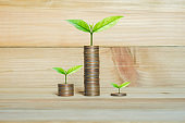 coins stack on wood table with green plant growing on. money saving business finance success wealth investment budget concept. startup plan. ESG.