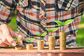 financial money saving concept. business hand put green plant growing coin stack.