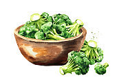 Bowl with fresh broccoli. Hand drawn watercolor illustration, isolated on white background