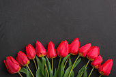 Bouquet of fresh red tulips on black background with copy space for text.