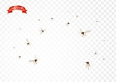 Flying mosquitoes flock in air isolated promo. Insect mosquito, gnat and pest illustration for repellent oil, spray and patches ads, poster, sign. Viruses and diseases spreading medical vector concept