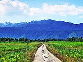 Photogenic mountain Velebit in the Republic of Croatia - Park prirode Velebit s ličke (sjeverne) strane, Hrvatska