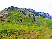 Mountain peak Gulme or Gulmen in the Obertoggenburg region, Stein