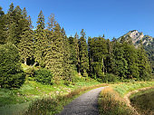 Hiking and walking trails in the Oberseetal alpine valley, Nafels (Näfels or Naefels) - Canton of Glarus, Switzerland