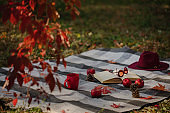 Autumn warm days. Indian summer. Picnic in the garden - blanket and pillows of gray, burgundy and green color on the background of autumn leaves.