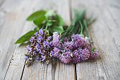 A bunch of flowering chives and sage with purple flowers on gray wooden background