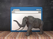 Web Browser with Elephant on Chalkboard Background  - 3D Rendering
