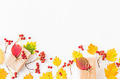 Flat lay border with colorful autumn leaves, berries and gift box on a white background