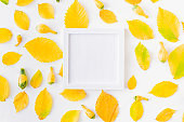 Mockup square white frame with with colorful autumn leaves and pumpkins on a white background