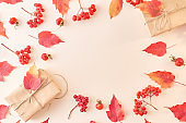 Flat lay frame with colorful autumn leaves and gift box on a color background