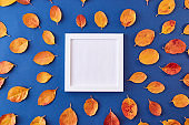Mockup square white frame with colorful autumn leaves on a blue background