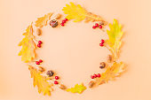 Flat lay frame with colorful autumn leaves, acorns and berries on a color background