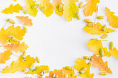 Flat lay composition with colorful autumn leaves and acorns on a white background