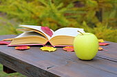A green apple and a book on a wooden bench in an autumn park.