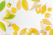 Flat lay composition with colorful autumn leaves, yellow pears and pumpkins on a white background