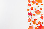 Flat lay border with colorful autumn leaves on a white background