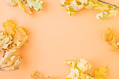 Flat lay frame with colorful autumn leaves on a color background