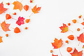 Flat lay frame with colorful autumn leaves on a white background