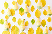 Flat lay pattern with colorful autumn leaves and pumpkins on a white background