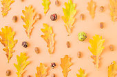 Flat lay pattern with colorful autumn leaves and acorns  on a color background