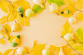 Flat lay composition with colorful autumn leaves, yellow pears and pumpkins on a colored background