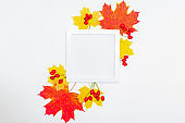 Mockup square white frame with colorful autumn leaves and berries on a white background