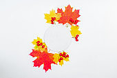 Mockup round white frame with colorful autumn leaves and berries on a white background