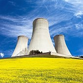 rapeseed canola colza cooling tower
