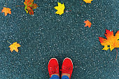 Background and texture of asphalt. Women's sneakers and maple leaves. View from above.