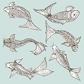 Set of hand drawn fish, Healthy food drawings set elements for menu design. Vector illustration.