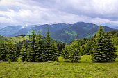 The place of tourists rest Carpathians Ukraine Europe. The nice view to the landscape of high mountains is opened from the green valley covered with grass. Marvelous stormy sky.