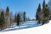 Winter landscape. Skiers and snowboarders riding on slopes of Krasnaya Polyana ski resort.